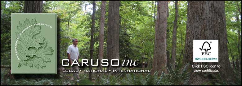 Caruso Inc. Local, National, International